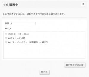img-print-option